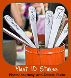 Indoor Gardening Gift-Plant Stakes