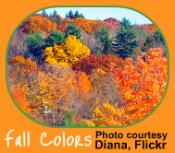 Autumn changes reflected in the Indoor Garden Calendar