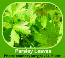 Recipes using fresh herbs like parsley