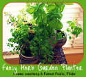 Multiple-Pot for an Indoor Herb Garden Gift