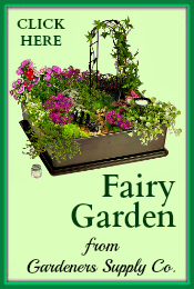 Fairy Garden Gardeners Supply