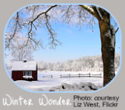 Winter Garden Calendar - House and Snow