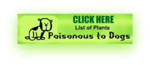 Dog Poison List Link