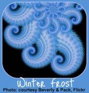 Winter Garden Calendar-Frosted Window