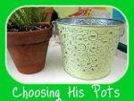 Nephrolepis Choosing His Pot